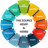 The Source Hemp And Herbs